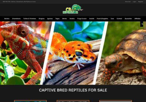 Captive Bred Reptiles